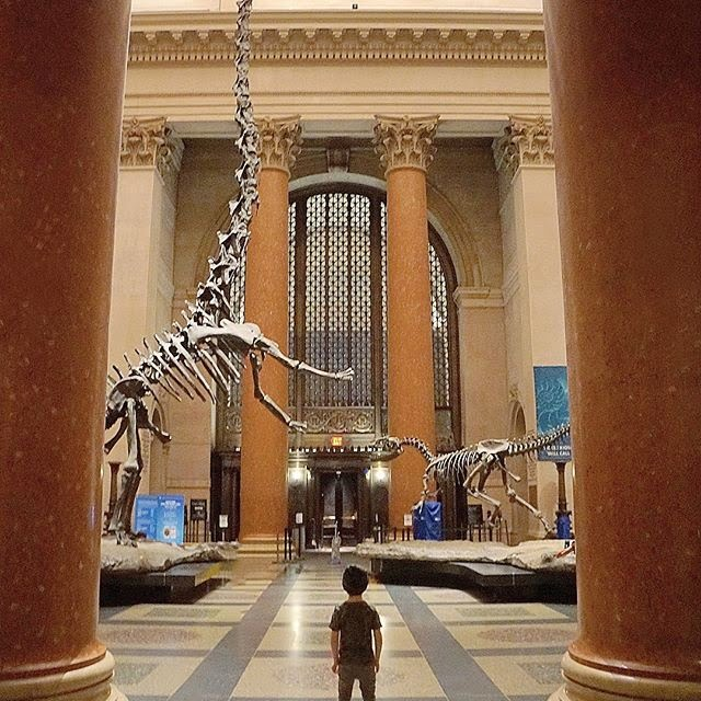 Los 10 museos de Estados Unidos: American Museum of Natural History